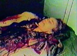 Crima feseneului